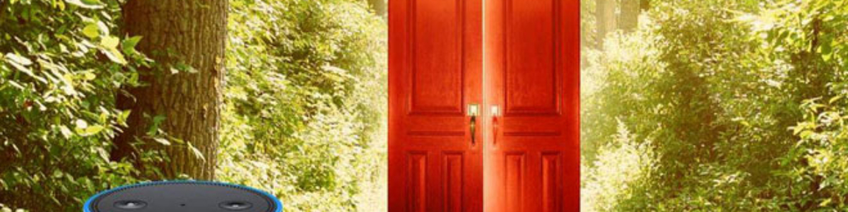 Everything That You Need To Know About Playing The Magic Door